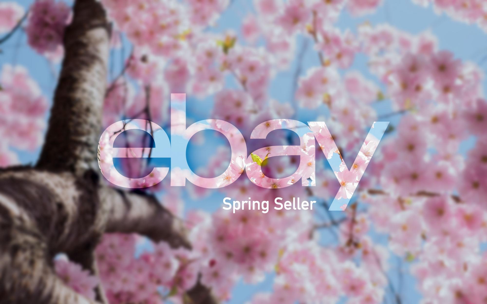 eBay's Spring Seller Update